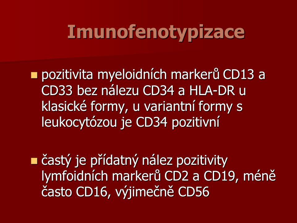 Imunofenotypizace pozitivita myeloidních markerů CD13 a CD33 bez nálezu CD34 a HLA-DR u klasické formy, u variantní formy s leukocytózou je CD34 pozitivní pozitivita myeloidních markerů CD13 a CD33 bez nálezu CD34 a HLA-DR u klasické formy, u variantní formy s leukocytózou je CD34 pozitivní častý je přídatný nález pozitivity lymfoidních markerů CD2 a CD19, méně často CD16, výjimečně CD56 častý je přídatný nález pozitivity lymfoidních markerů CD2 a CD19, méně často CD16, výjimečně CD56