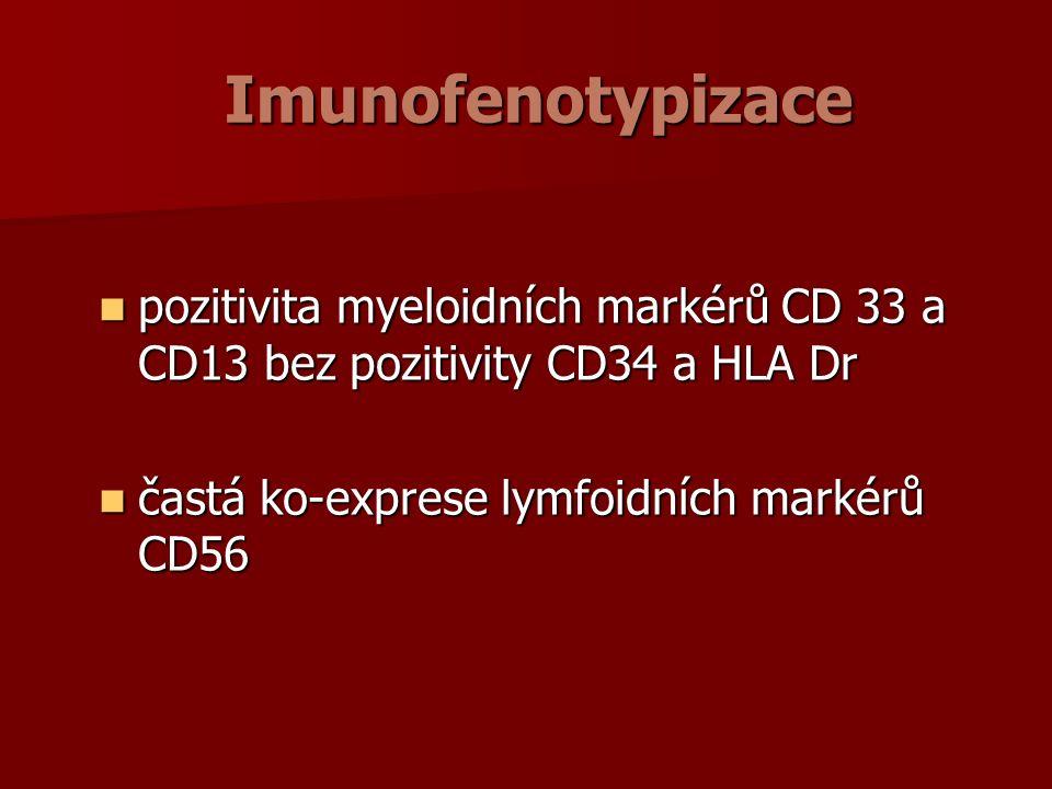 Imunofenotypizace pozitivita myeloidních markérů CD 33 a CD13 bez pozitivity CD34 a HLA Dr pozitivita myeloidních markérů CD 33 a CD13 bez pozitivity CD34 a HLA Dr častá ko-exprese lymfoidních markérů CD56 častá ko-exprese lymfoidních markérů CD56