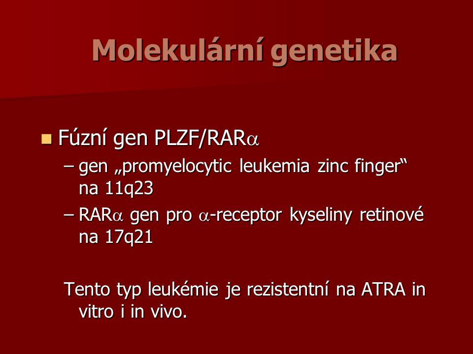 "Molekulární genetika Fúzní gen PLZF/RAR  Fúzní gen PLZF/RAR  –gen ""promyelocytic leukemia zinc finger na 11q23 –RAR  gen pro  -receptor kyseliny retinové na 17q21 Tento typ leukémie je rezistentní na ATRA in vitro i in vivo."
