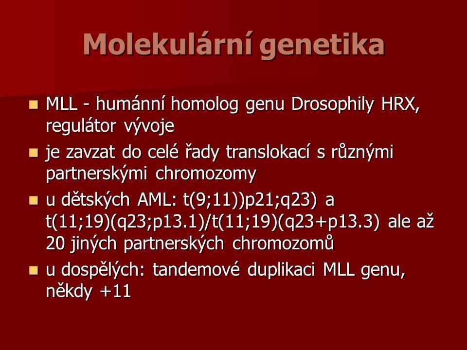 Molekulární genetika MLL - humánní homolog genu Drosophily HRX, regulátor vývoje MLL - humánní homolog genu Drosophily HRX, regulátor vývoje je zavzat do celé řady translokací s různými partnerskými chromozomy je zavzat do celé řady translokací s různými partnerskými chromozomy u dětských AML: t(9;11))p21;q23) a t(11;19)(q23;p13.1)/t(11;19)(q23+p13.3) ale až 20 jiných partnerských chromozomů u dětských AML: t(9;11))p21;q23) a t(11;19)(q23;p13.1)/t(11;19)(q23+p13.3) ale až 20 jiných partnerských chromozomů u dospělých: tandemové duplikaci MLL genu, někdy +11 u dospělých: tandemové duplikaci MLL genu, někdy +11