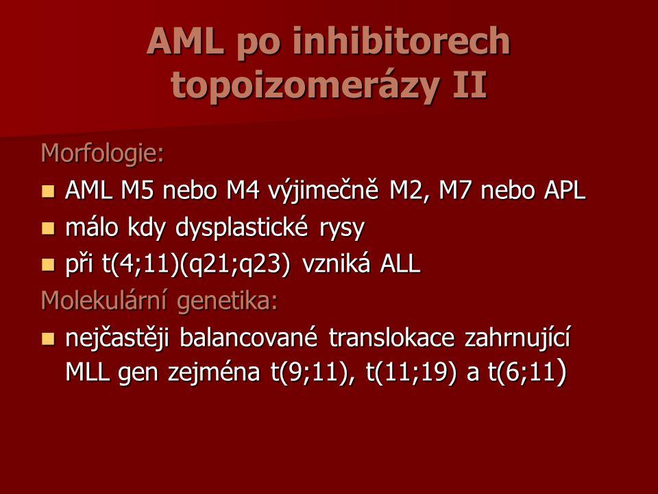 AML po inhibitorech topoizomerázy II Morfologie: AML M5 nebo M4 výjimečně M2, M7 nebo APL AML M5 nebo M4 výjimečně M2, M7 nebo APL málo kdy dysplastické rysy málo kdy dysplastické rysy při t(4;11)(q21;q23) vzniká ALL při t(4;11)(q21;q23) vzniká ALL Molekulární genetika: nejčastěji balancované translokace zahrnující MLL gen zejména t(9;11), t(11;19) a t(6;11 ) nejčastěji balancované translokace zahrnující MLL gen zejména t(9;11), t(11;19) a t(6;11 )