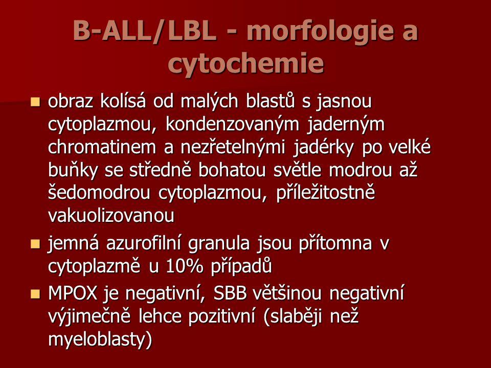 B-ALL/LBL - morfologie a cytochemie obraz kolísá od malých blastů s jasnou cytoplazmou, kondenzovaným jaderným chromatinem a nezřetelnými jadérky po velké buňky se středně bohatou světle modrou až šedomodrou cytoplazmou, příležitostně vakuolizovanou obraz kolísá od malých blastů s jasnou cytoplazmou, kondenzovaným jaderným chromatinem a nezřetelnými jadérky po velké buňky se středně bohatou světle modrou až šedomodrou cytoplazmou, příležitostně vakuolizovanou jemná azurofilní granula jsou přítomna v cytoplazmě u 10% případů jemná azurofilní granula jsou přítomna v cytoplazmě u 10% případů MPOX je negativní, SBB většinou negativní výjimečně lehce pozitivní (slaběji než myeloblasty) MPOX je negativní, SBB většinou negativní výjimečně lehce pozitivní (slaběji než myeloblasty)