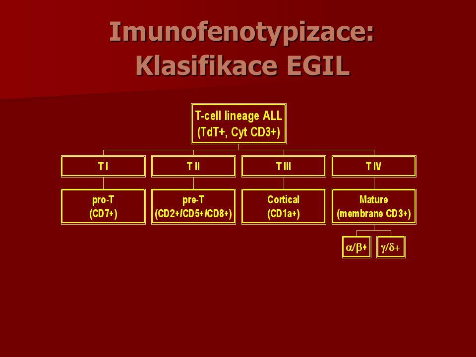 Imunofenotypizace: Klasifikace EGIL