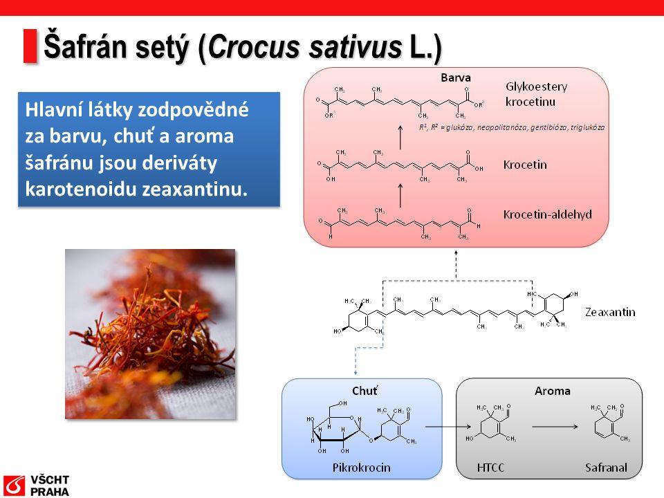 Šafrán setý ( Crocus sativus L.) Hlavní látky zodpovědné za barvu, chuť a aroma šafránu jsou deriváty karotenoidu zeaxantinu.