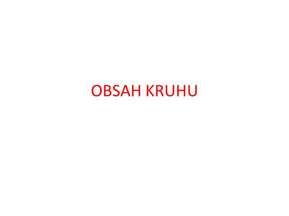 OBSAH KRUHU