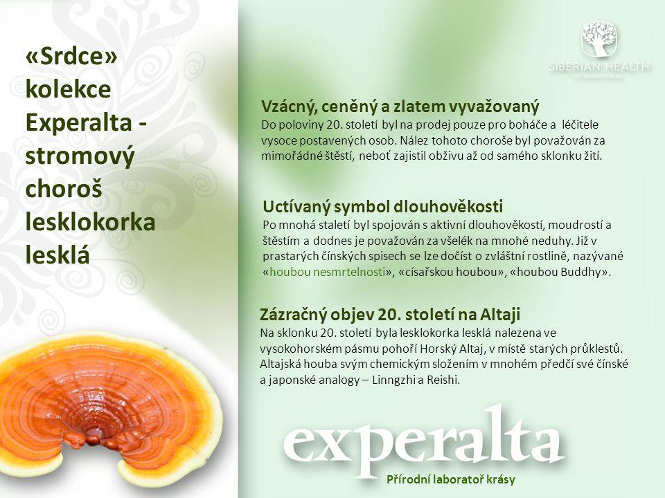 «Srdce» kolekce Experalta - stromový choroš lesklokorka lesklá Vzácný, ceněný a zlatem vyvažovaný Do poloviny 20. století byl na prodej pouze pro bohá