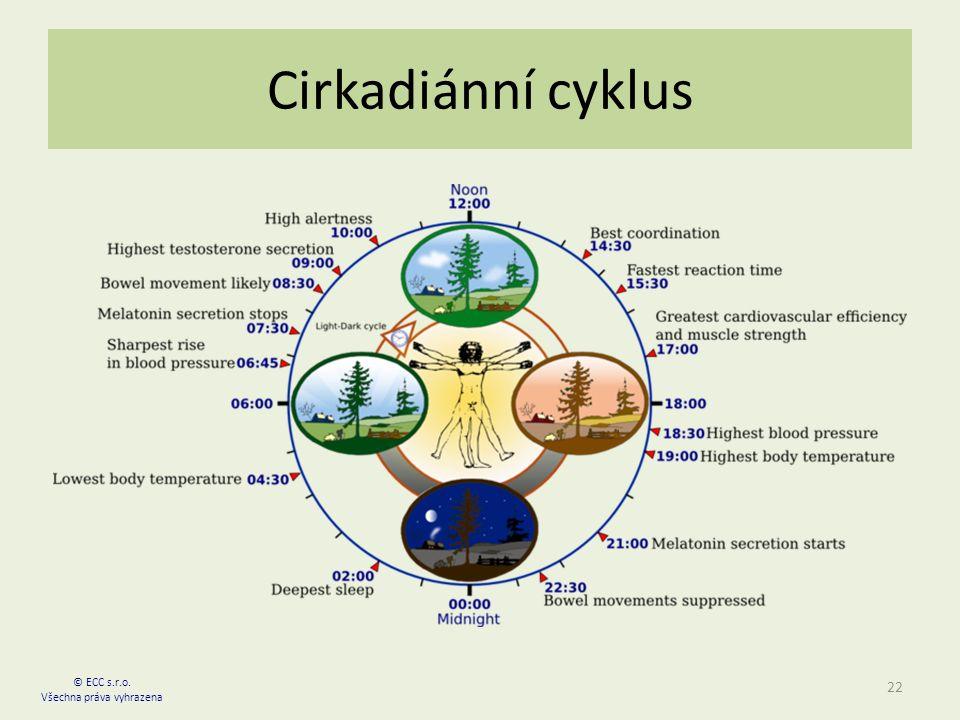 Cirkadiánní cyklus 22 © ECC s.r.o. Všechna práva vyhrazena