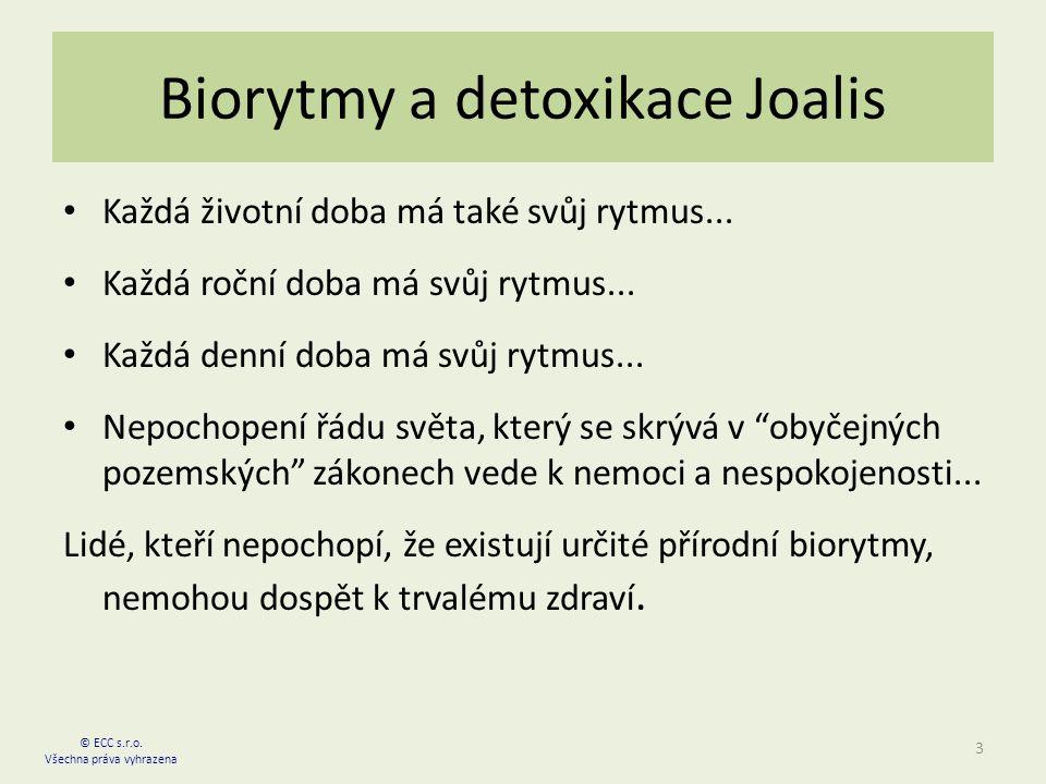 Biorytmy a detoxikace Joalis Každá životní doba má také svůj rytmus...