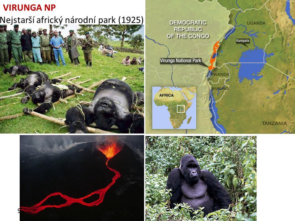 9.10.2013 VIRUNGA NP Nejstarší africký národní park (1925)