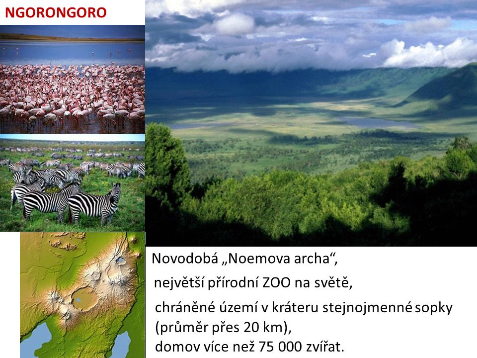 chráněné území v kráteru stejnojmenné sopky (průměr přes 20 km), domov více než 75 000 zvířat.