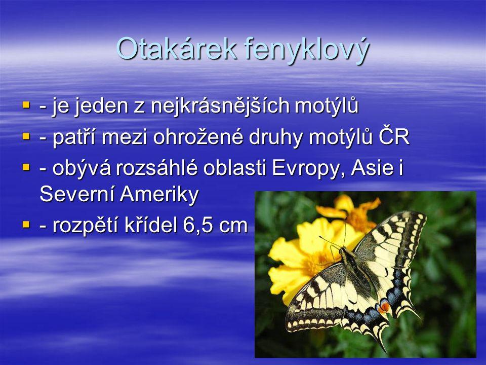Otakárek fenyklový  - je jeden z nejkrásnějších motýlů  - patří mezi ohrožené druhy motýlů ČR  - obývá rozsáhlé oblasti Evropy, Asie i Severní Ameriky  - rozpětí křídel 6,5 cm
