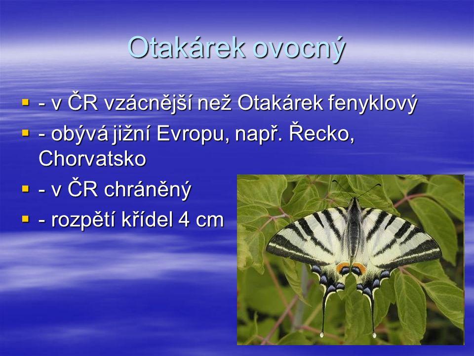 Otakárek ovocný  - v ČR vzácnější než Otakárek fenyklový  - obývá jižní Evropu, např.