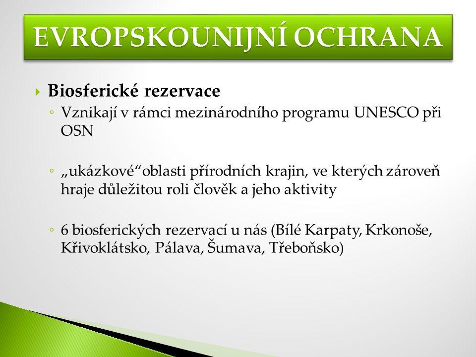 """ Biosferické rezervace ◦ Vznikají v rámci mezinárodního programu UNESCO při OSN ◦ """"ukázkové oblasti přírodních krajin, ve kterých zároveň hraje důležitou roli člověk a jeho aktivity ◦ 6 biosferických rezervací u nás (Bílé Karpaty, Krkonoše, Křivoklátsko, Pálava, Šumava, Třeboňsko)"""