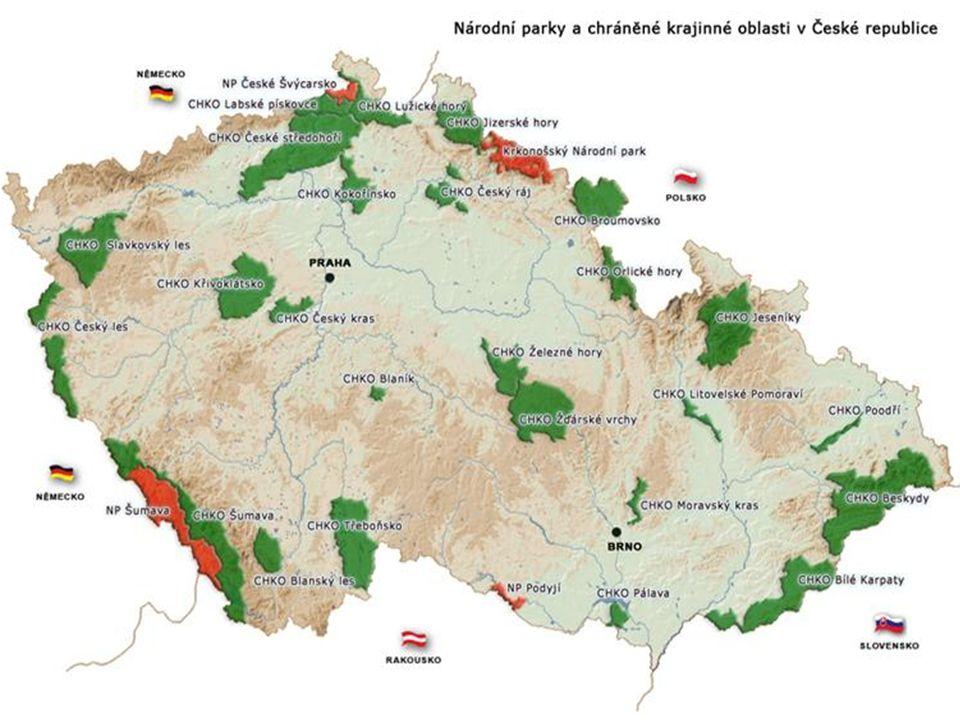 = seznam ohrožených druhů rostlin vydávaný každé dva roky Mezinárodním svazem ochrany přírody (IUCN)  Slouží k objektivnímu posouzení stupně ohroženosti druhů na určitém území  Není právně závazný, ale slouží jako podklad pro vytváření vyhlášek o chráněných rostlinách  Označení stupně ohroženosti v červeném seznamu: A1 – vymizelé a vyhynulé druhyC1 – kriticky ohrožené A2 – nezvěstné druhyC2 – silně ohrožené A3 – nejasné případy vyhynuléC3 – ohrožené či nezvěstnéC4 – vyžadující pozornost