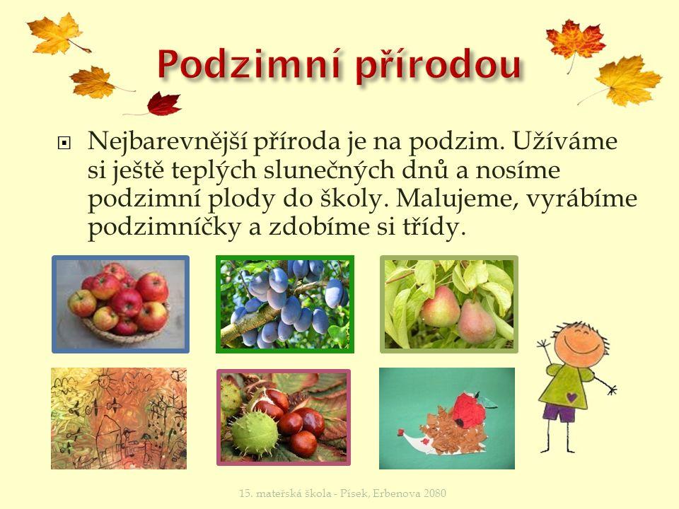  Nejbarevnější příroda je na podzim.