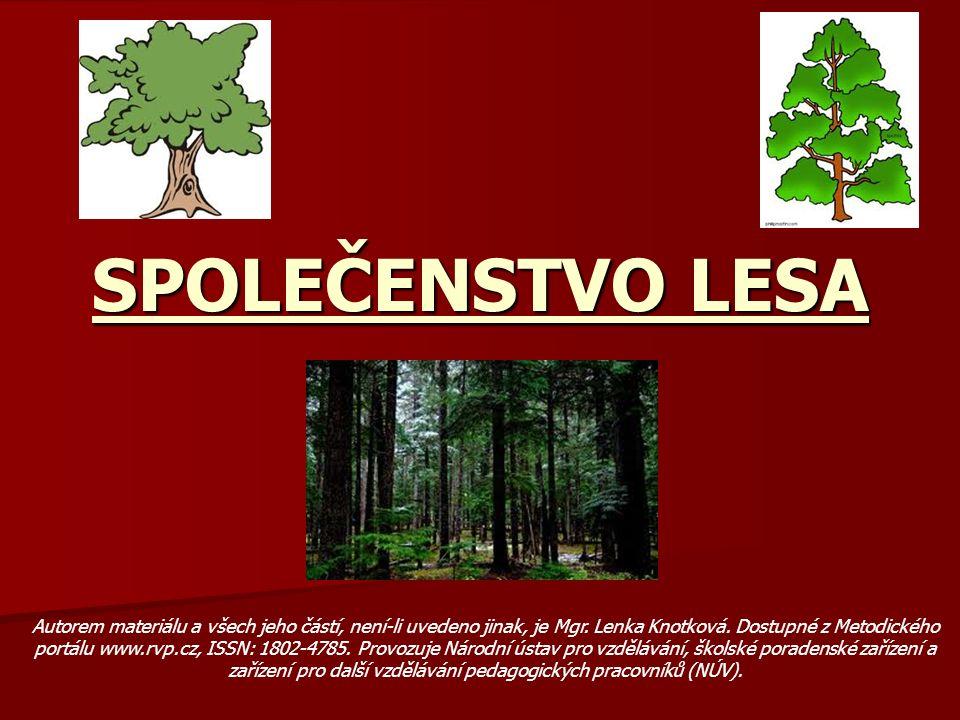 Anotace:Prezentace na téma Společenstvo les seznamuje žáky s funkcí a důležitostí lesů, rostlinami a zvířaty a několika potravními řetězci.