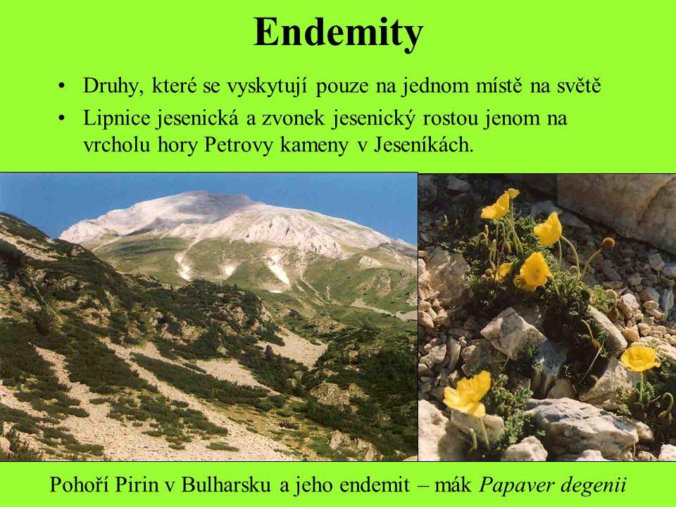 Endemity Druhy, které se vyskytují pouze na jednom místě na světě Lipnice jesenická a zvonek jesenický rostou jenom na vrcholu hory Petrovy kameny v Jeseníkách.