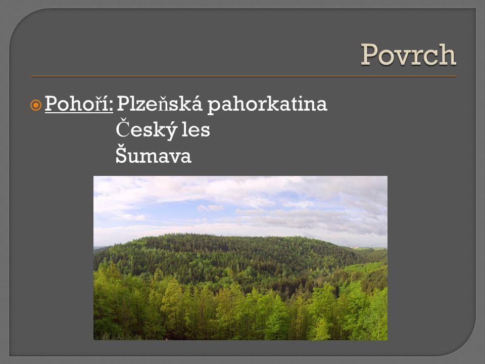  Poho ř í: Plze ň ská pahorkatina Č eský les Šumava