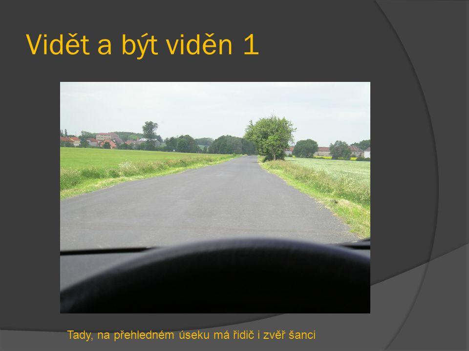 Vidět a být viděn 1 Tady, na přehledném úseku má řidič i zvěř šanci