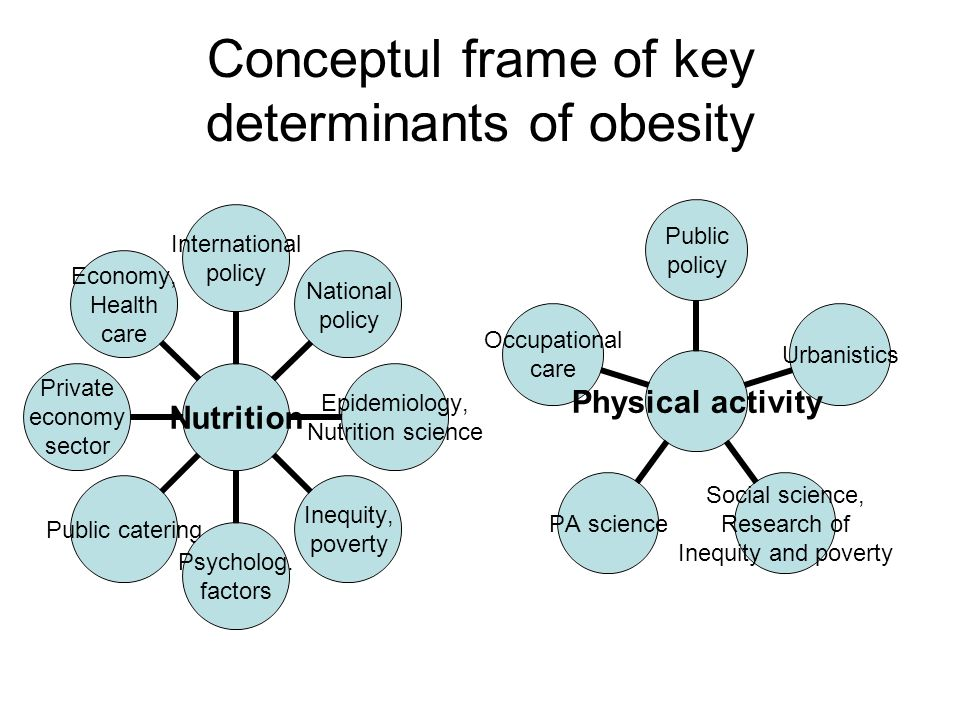 Conceptul frame of key determinants of obesity Nutrition International policy National policy Epidemiology, Nutrition science Inequity, poverty Psycholog.