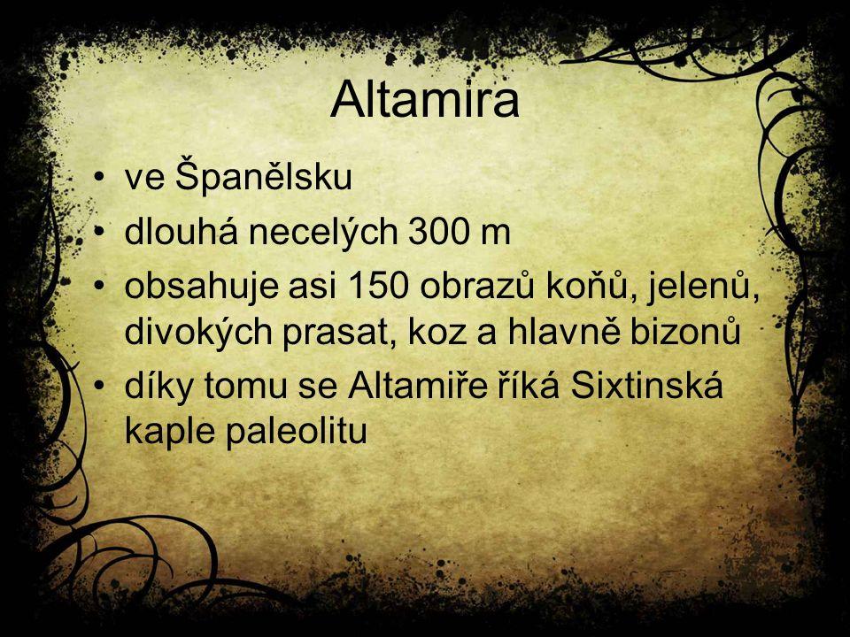 Altamira ve Španělsku dlouhá necelých 300 m obsahuje asi 150 obrazů koňů, jelenů, divokých prasat, koz a hlavně bizonů díky tomu se Altamiře říká Sixtinská kaple paleolitu