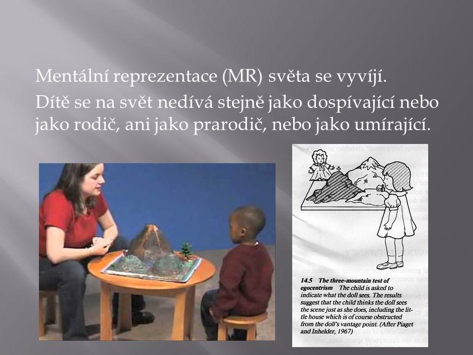 Mentální reprezentace (MR) světa se vyvíjí. Dítě se na svět nedívá stejně jako dospívající nebo jako rodič, ani jako prarodič, nebo jako umírající.