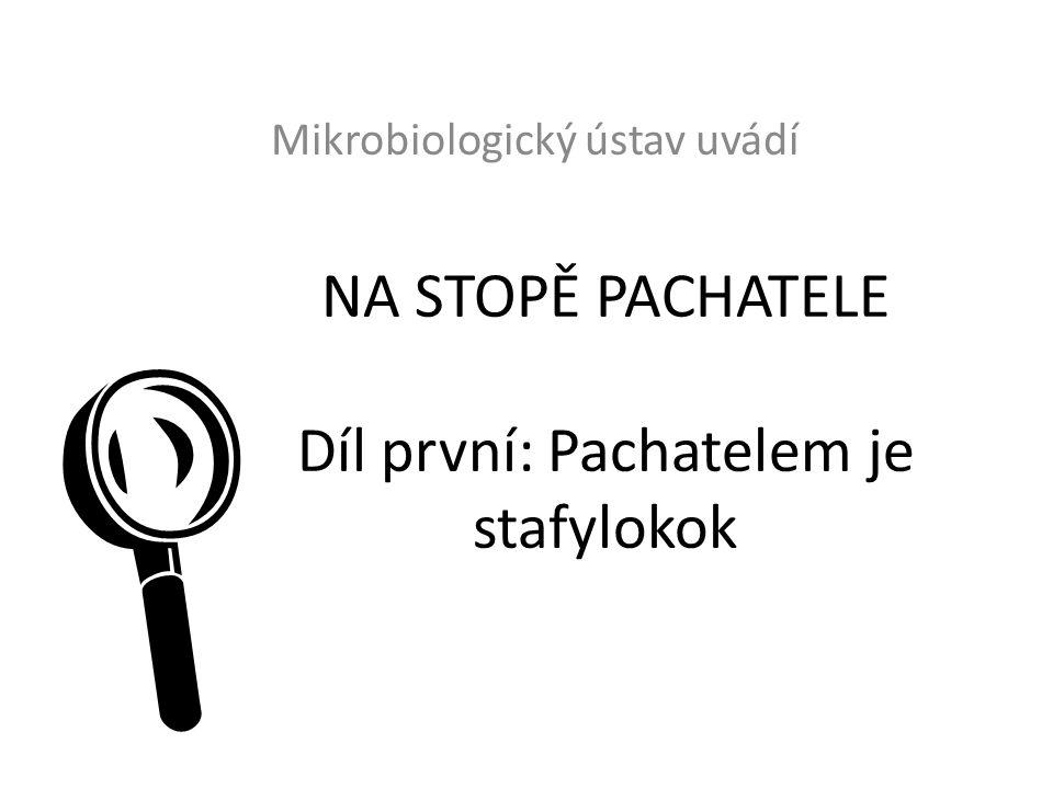 NA STOPĚ PACHATELE Díl první: Pachatelem je stafylokok Mikrobiologický ústav uvádí 