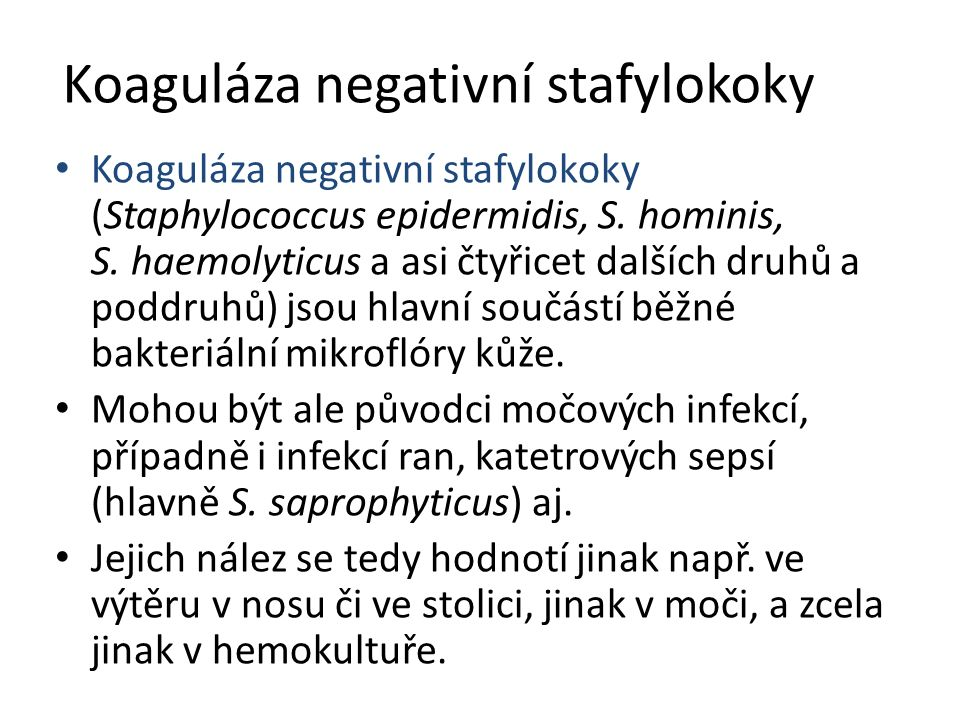 Koaguláza negativní stafylokoky Koaguláza negativní stafylokoky (Staphylococcus epidermidis, S. hominis, S. haemolyticus a asi čtyřicet dalších druhů