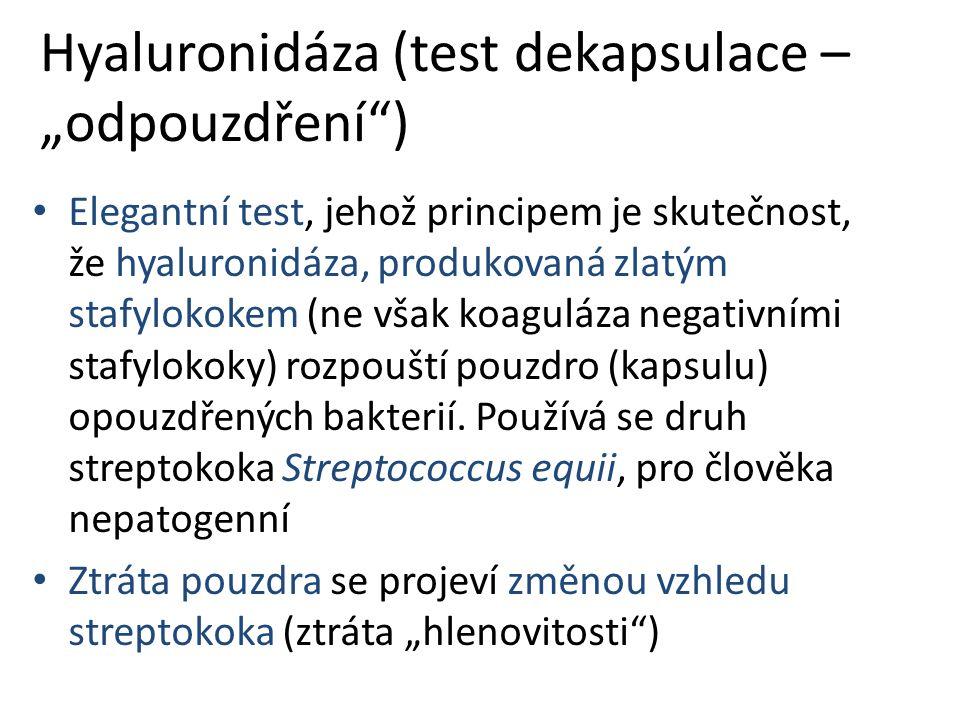 """Hyaluronidáza (test dekapsulace – """"odpouzdření ) Elegantní test, jehož principem je skutečnost, že hyaluronidáza, produkovaná zlatým stafylokokem (ne však koaguláza negativními stafylokoky) rozpouští pouzdro (kapsulu) opouzdřených bakterií."""