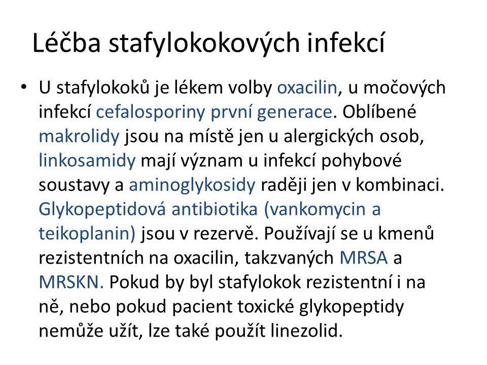 Léčba stafylokokových infekcí U stafylokoků je lékem volby oxacilin, u močových infekcí cefalosporiny první generace. Oblíbené makrolidy jsou na místě