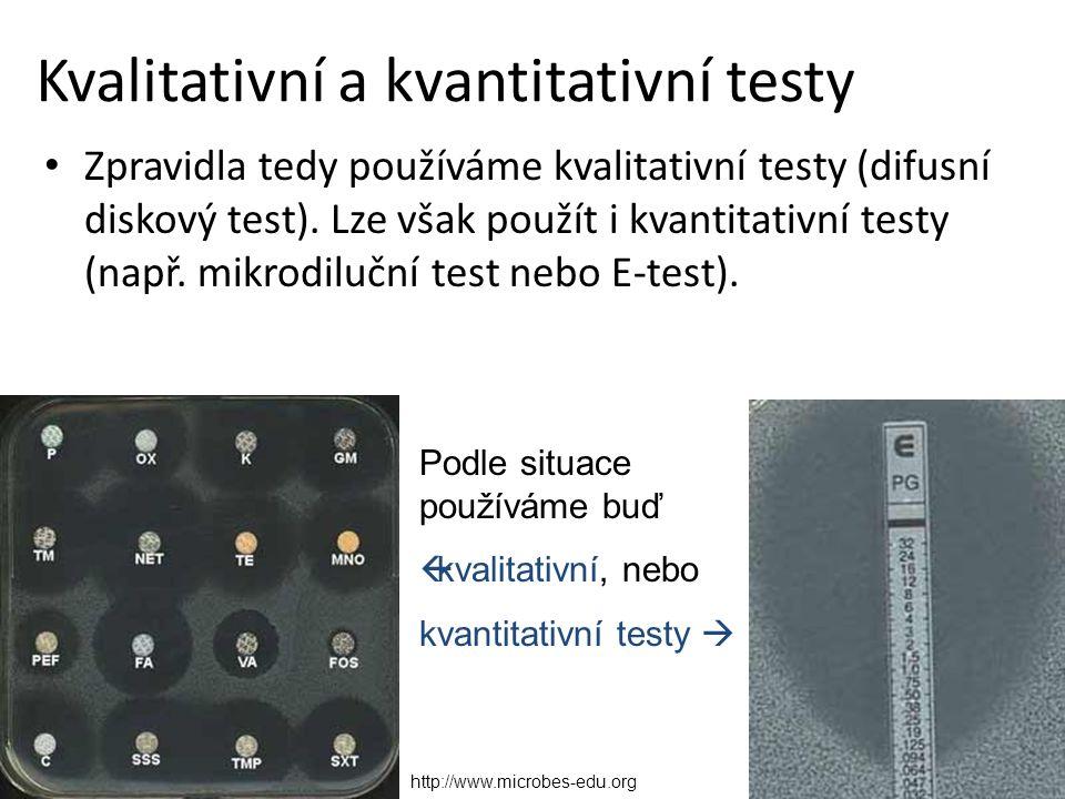 Kvalitativní a kvantitativní testy Zpravidla tedy používáme kvalitativní testy (difusní diskový test).