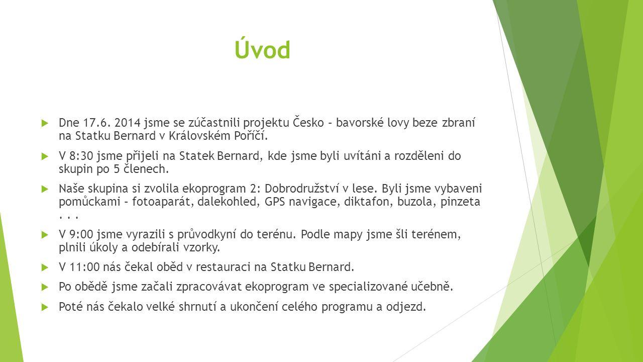 Dobrodružství v lese Tereza Krmelová, Tereza Fáberová, Jana Bónová, Adriana Pliskvová, Natálie Najmanová