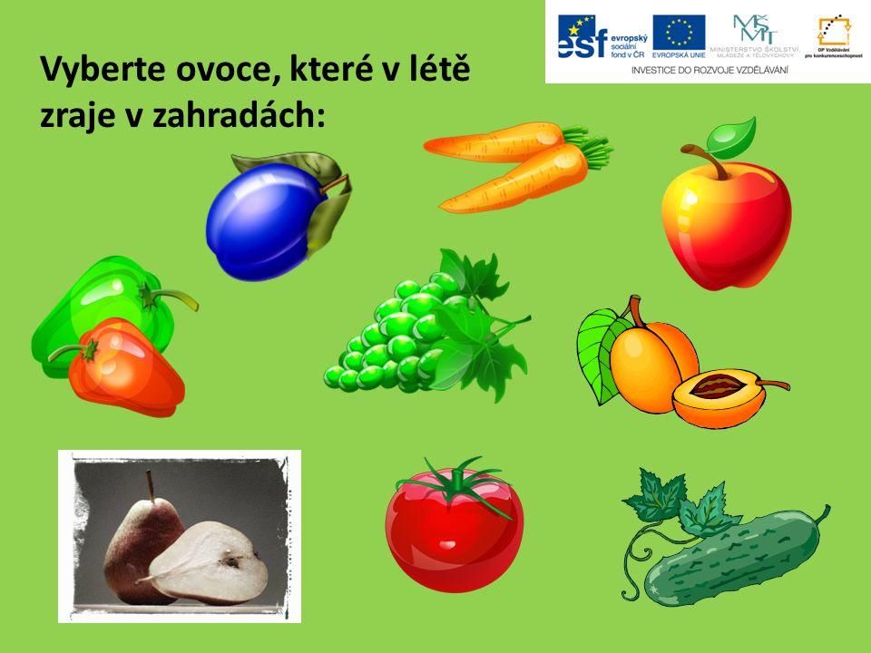 Vyberte ovoce, které v létě zraje v zahradách: