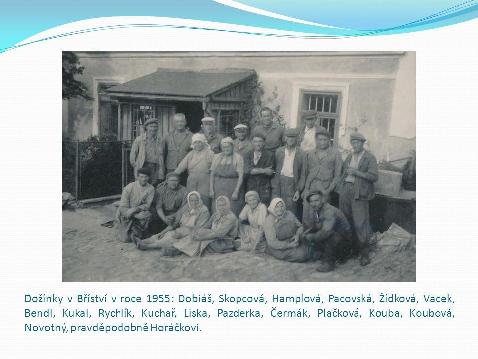 Dožínky v Bříství v roce 1955: Dobiáš, Skopcová, Hamplová, Pacovská, Žídková, Vacek, Bendl, Kukal, Rychlík, Kuchař, Liska, Pazderka, Čermák, Plačková, Kouba, Koubová, Novotný, pravděpodobně Horáčkovi.