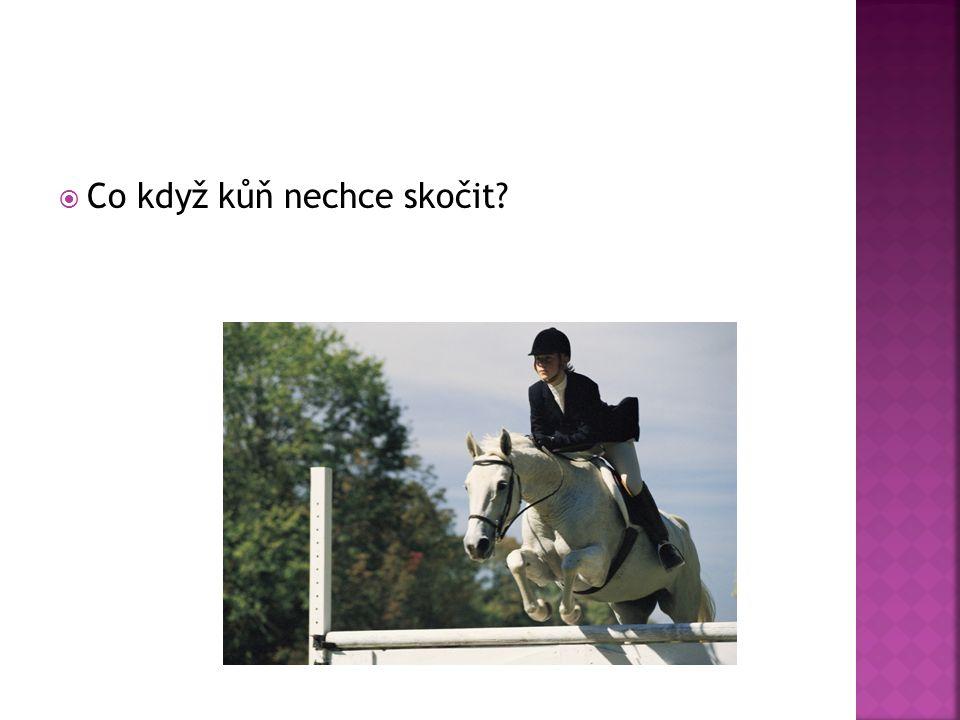  Co když kůň nechce skočit