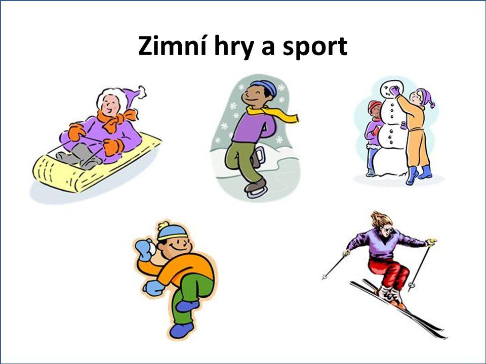 Zimní hry a sport