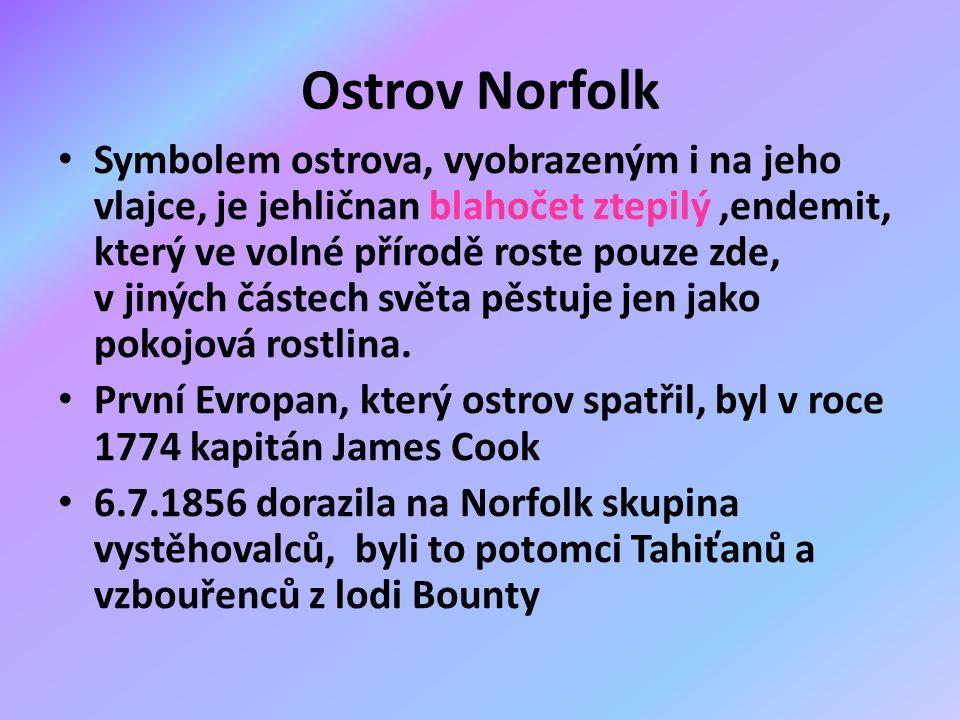 Ostrov Norfolk Symbolem ostrova, vyobrazeným i na jeho vlajce, je jehličnan blahočet ztepilý,endemit, který ve volné přírodě roste pouze zde, v jiných částech světa pěstuje jen jako pokojová rostlina.