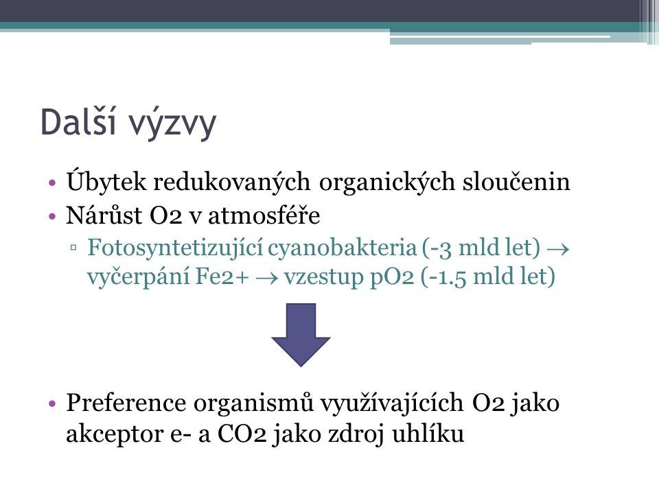 Další výzvy Úbytek redukovaných organických sloučenin Nárůst O2 v atmosféře ▫Fotosyntetizující cyanobakteria (-3 mld let)  vyčerpání Fe2+  vzestup pO2 (-1.5 mld let) Preference organismů využívajících O2 jako akceptor e- a CO2 jako zdroj uhlíku