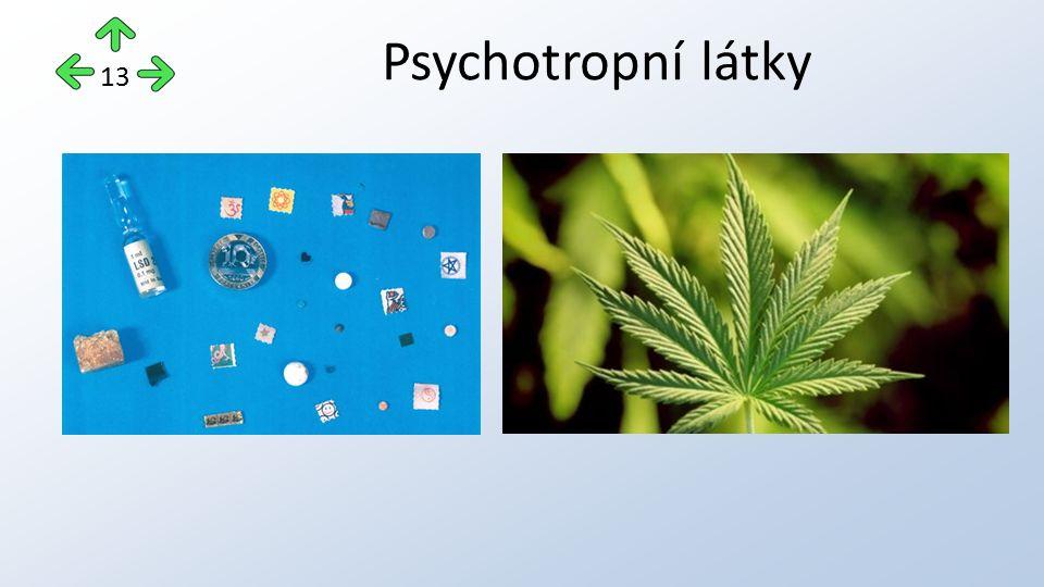 Psychotropní látky 13