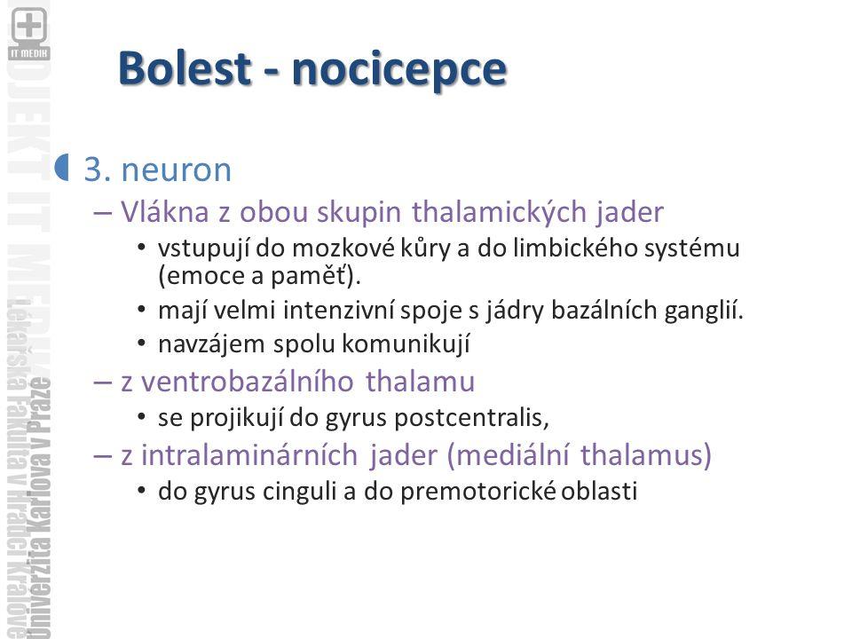 Bolest - nocicepce  3.