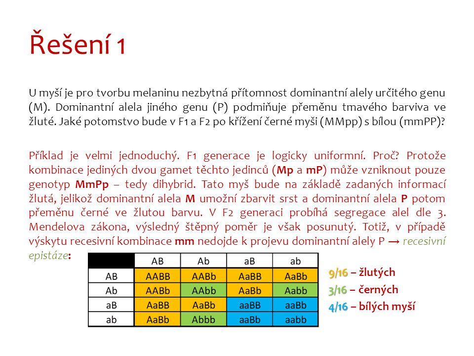 Řešení 1 U myší je pro tvorbu melaninu nezbytná přítomnost dominantní alely určitého genu (M).