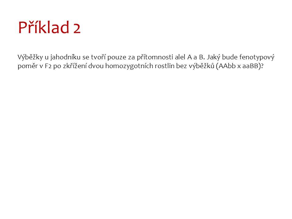 Příklad 2 Výběžky u jahodníku se tvoří pouze za přítomnosti alel A a B.