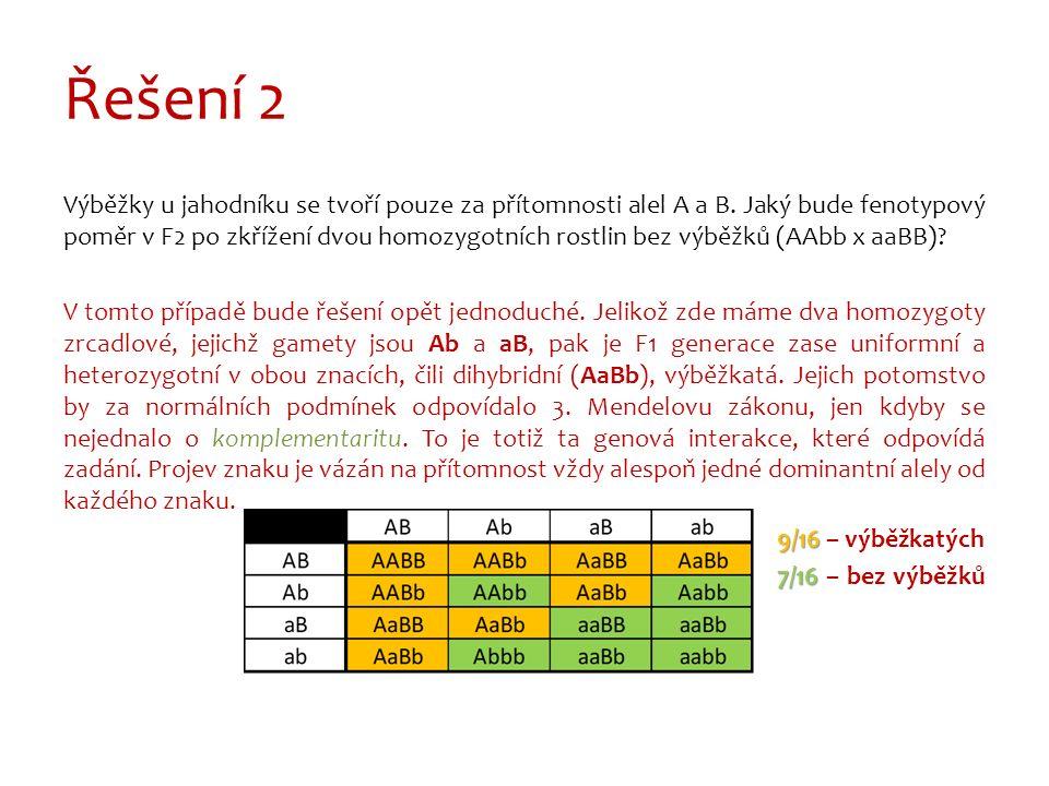 Řešení 2 Výběžky u jahodníku se tvoří pouze za přítomnosti alel A a B.