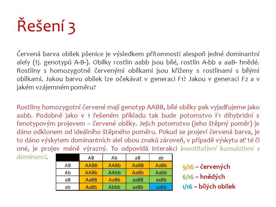 Řešení 3 Červená barva obilek pšenice je výsledkem přítomnosti alespoň jedné dominantní alely (tj.