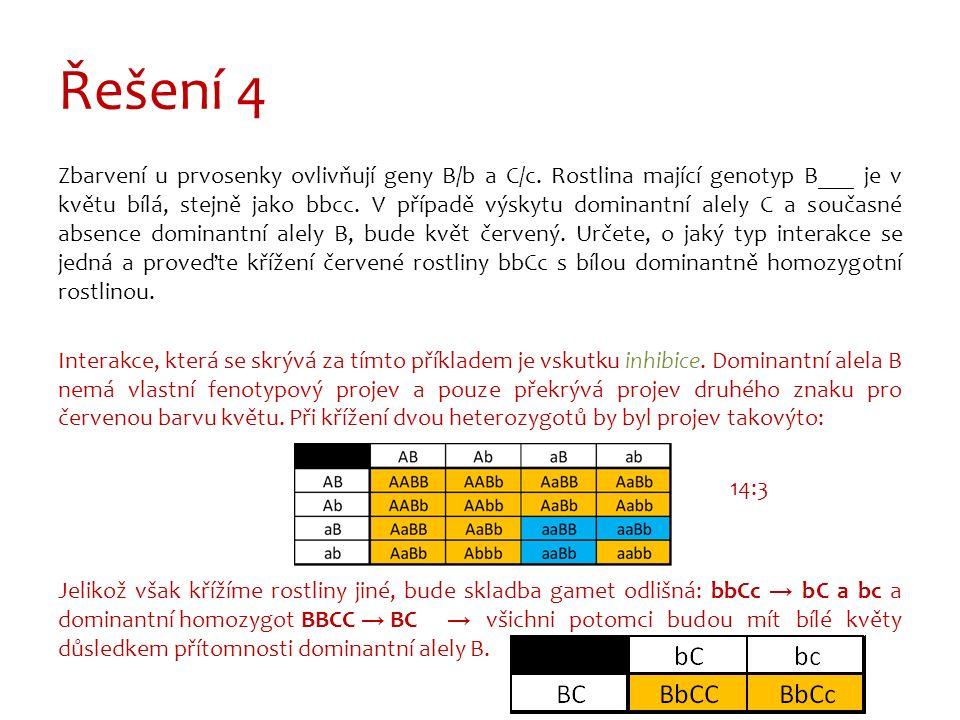 Řešení 4 Zbarvení u prvosenky ovlivňují geny B/b a C/c.