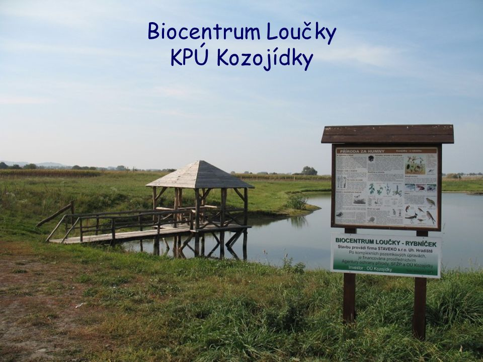 Biocentrum Loučky KPÚ Kozojídky