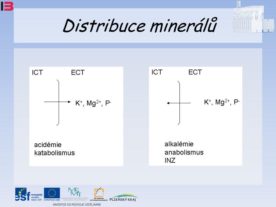 Distribuce minerálů