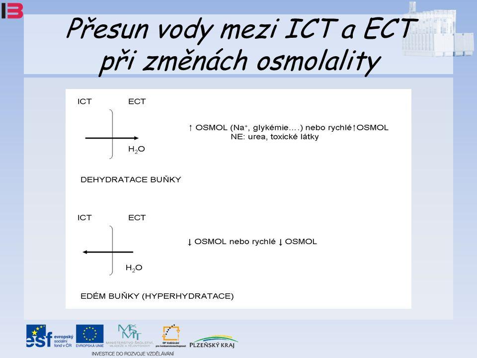 Přesun vody mezi ICT a ECT při změnách osmolality