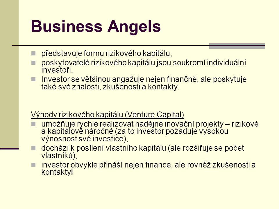 Business Angels představuje formu rizikového kapitálu, poskytovatelé rizikového kapitálu jsou soukromí individuální investoři.