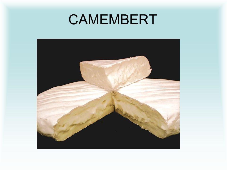 CHARAKTERISTIKA HERMELÍNU Hermelín má kulovitý tvar (vypadá jako puk) a má jemnou ušlechtilou plíseň na povrchu.